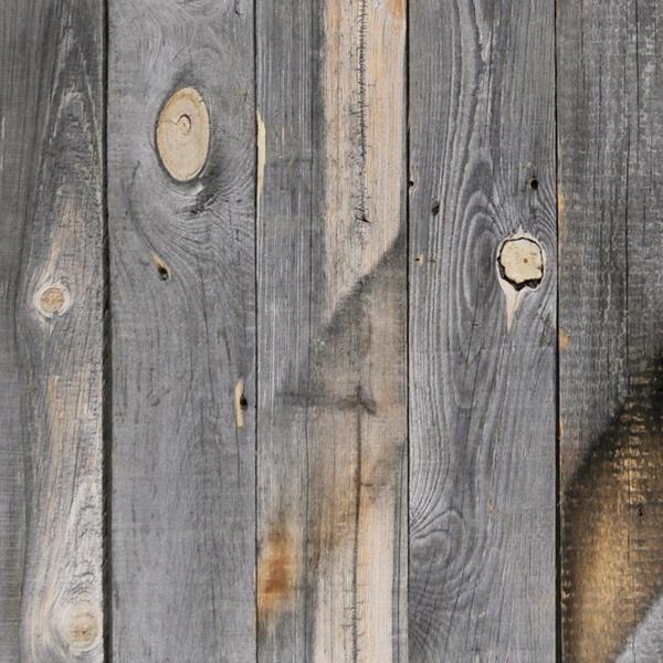 r_fence.jpg